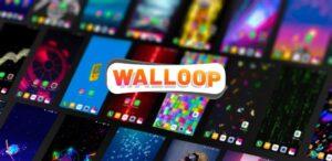 Live Wallpapers HD & Backgrounds 4k/3D – WALLOOP™